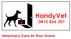 HandyVet